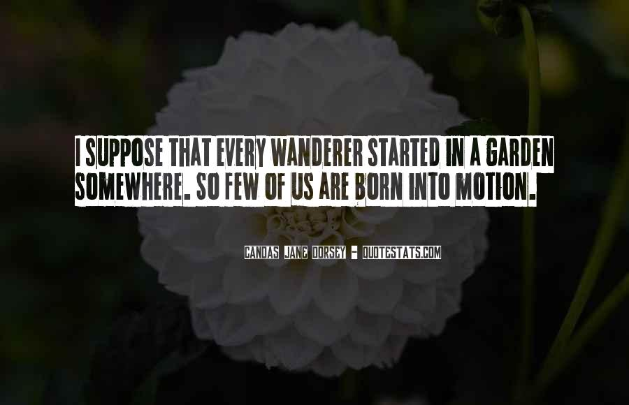 Wanderer Travel Quotes #17613