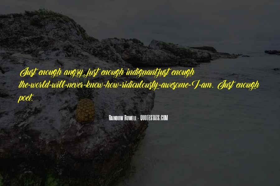 Quotes About Never Having Enough #28553