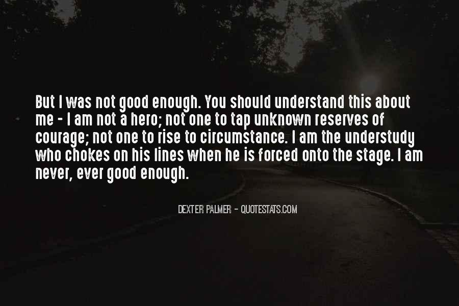 Quotes About Never Having Enough #40286