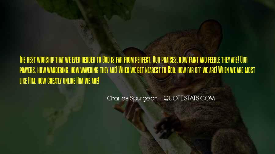 We Are Far From Perfect Quotes #1586149
