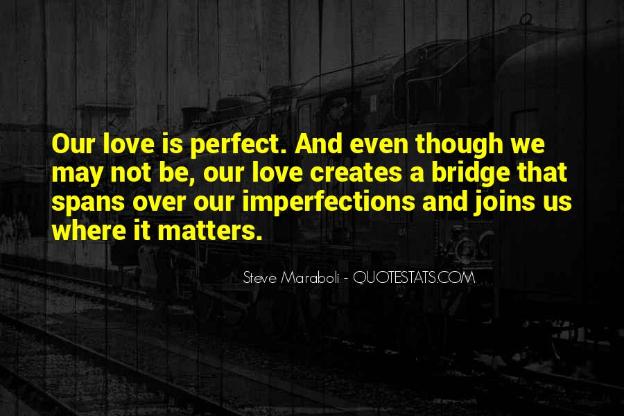 We Are Far From Perfect Quotes #405
