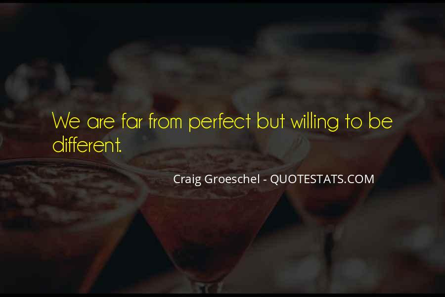 We Are Far From Perfect Quotes #75341