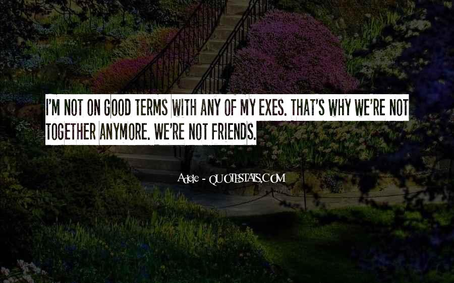 We Not Friends Anymore Quotes #1339113