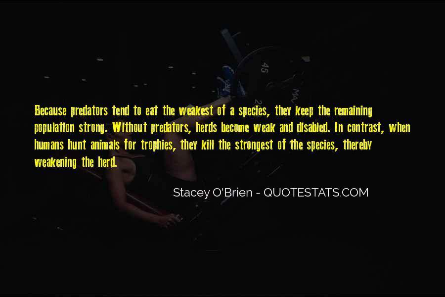 Weakest Quotes #95563