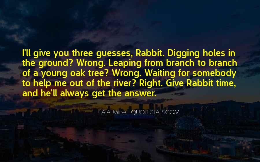 Well Digging Quotes #209867