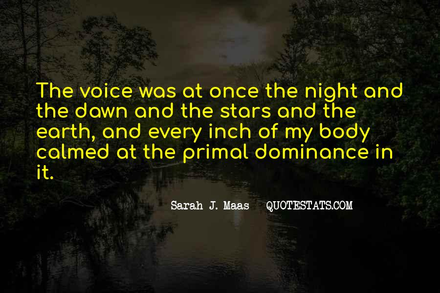 Quotes About Stars At Night #427646
