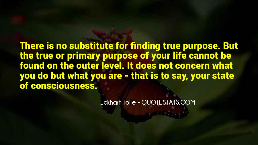 What Is The Purpose Of Life Quotes #140241