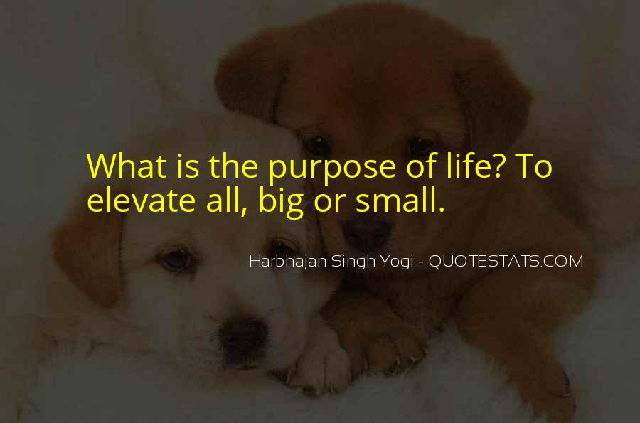 What Is The Purpose Of Life Quotes #618261
