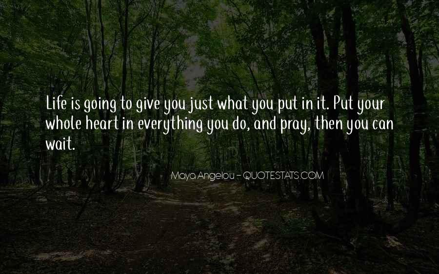What You Give Quotes #9517