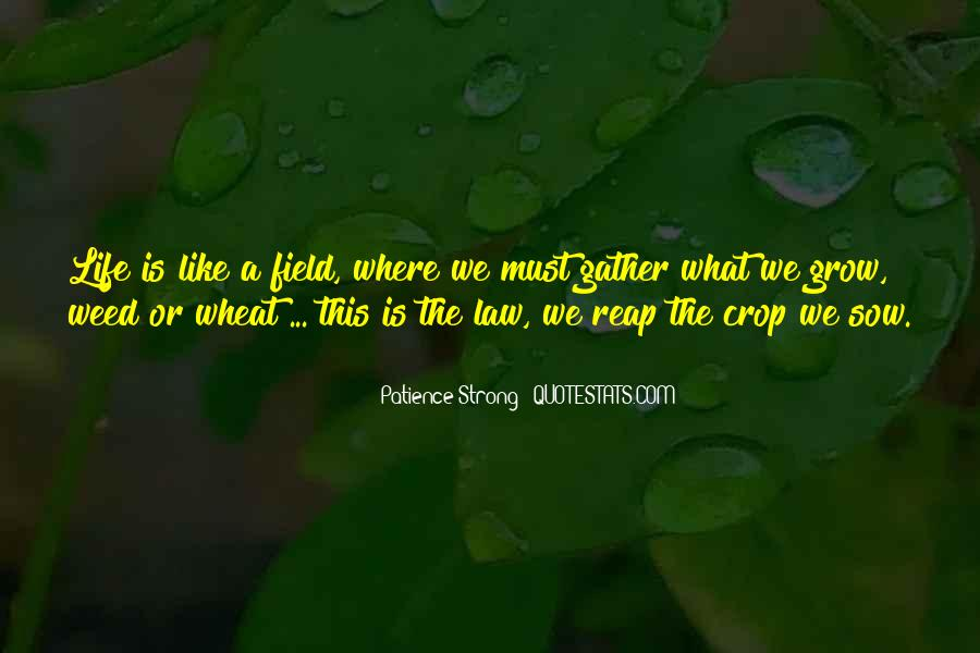 Wheat Field Quotes #1424265