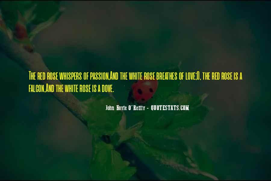 White Dove Quotes #205952