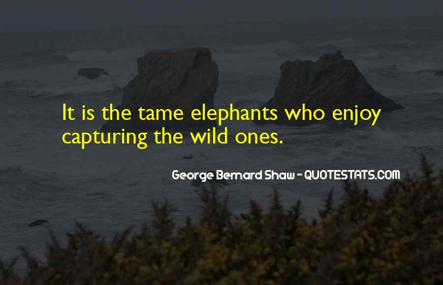 Wild Ones Quotes #750549