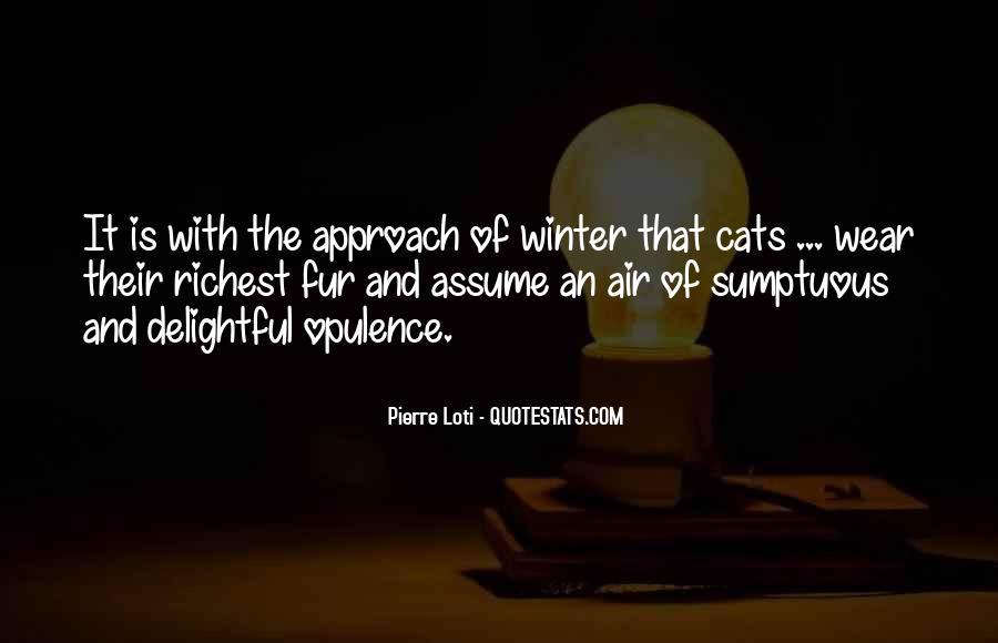 Winter Cat Quotes #638785