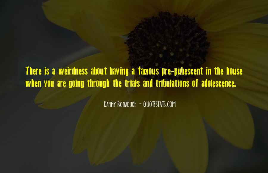 Without Trials And Tribulations Quotes #679110