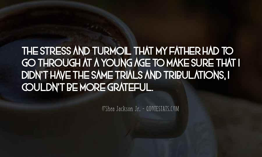 Without Trials And Tribulations Quotes #716293
