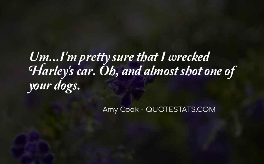 Wrecked Quotes #890868