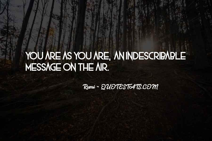 You Are Indescribable Quotes #1004206