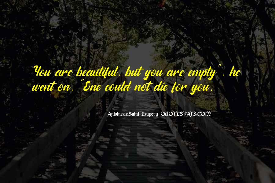 You Are Not Beautiful Quotes #137764