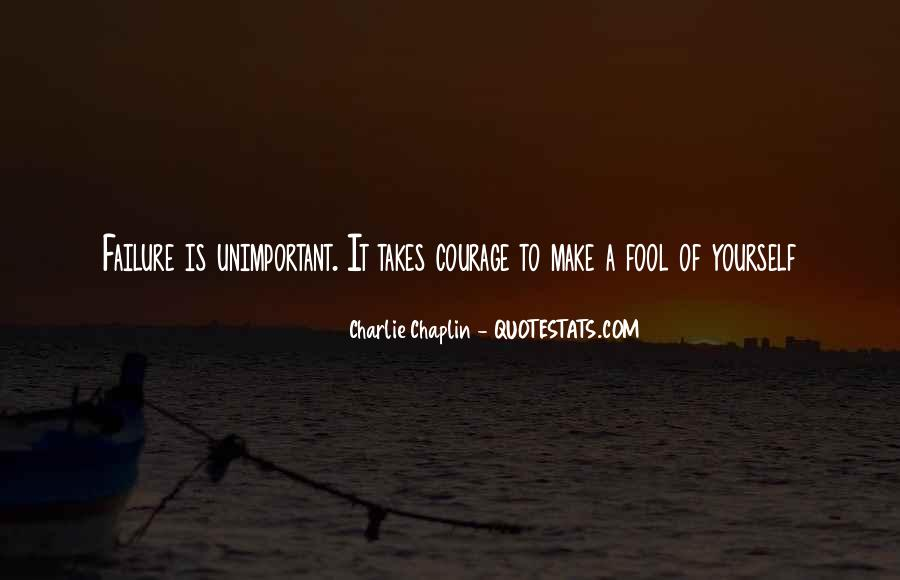 You Are Unimportant Quotes #199733