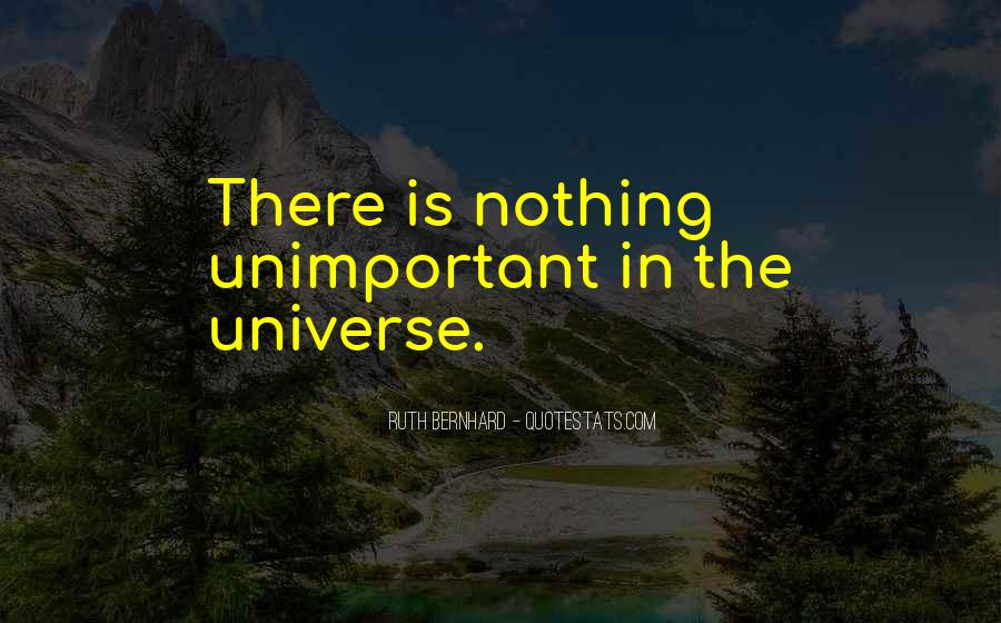 You Are Unimportant Quotes #210064