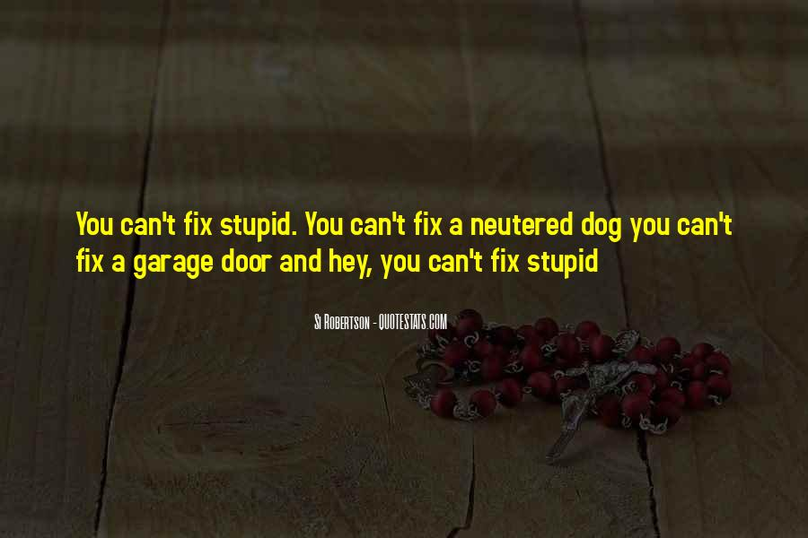 You Can't Fix Stupid Quotes #598115