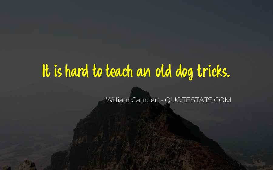 You Can't Teach An Old Dog New Tricks Quotes #384386