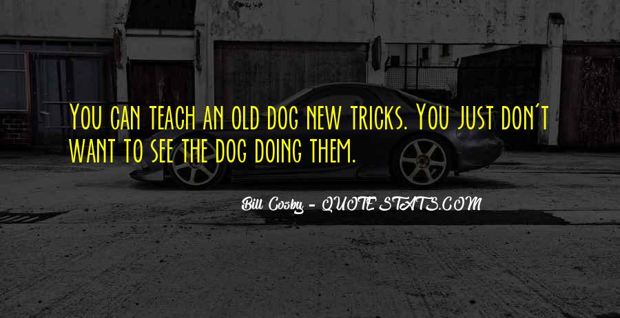 You Can't Teach An Old Dog New Tricks Quotes #507078