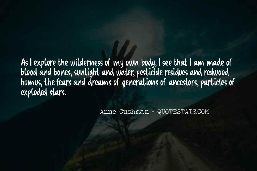 Quotes About Fears And Dreams #187933