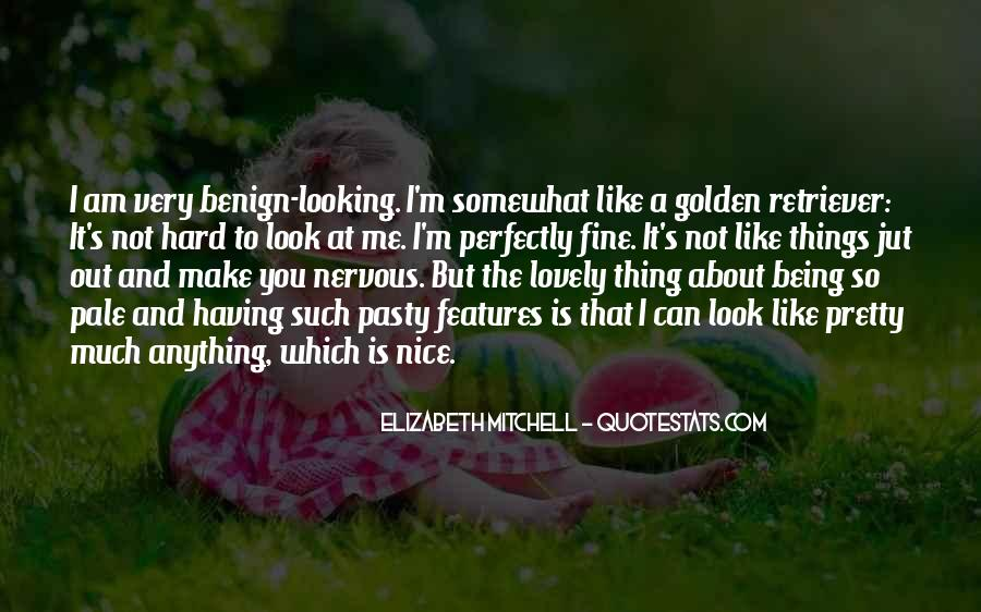 You Look So Nice Quotes #1027001