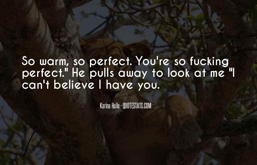 You Look So Perfect Quotes #517318