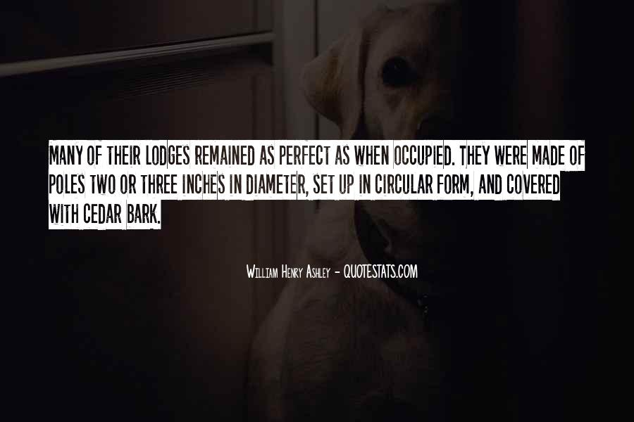 You Made Me Perfect Quotes #212179
