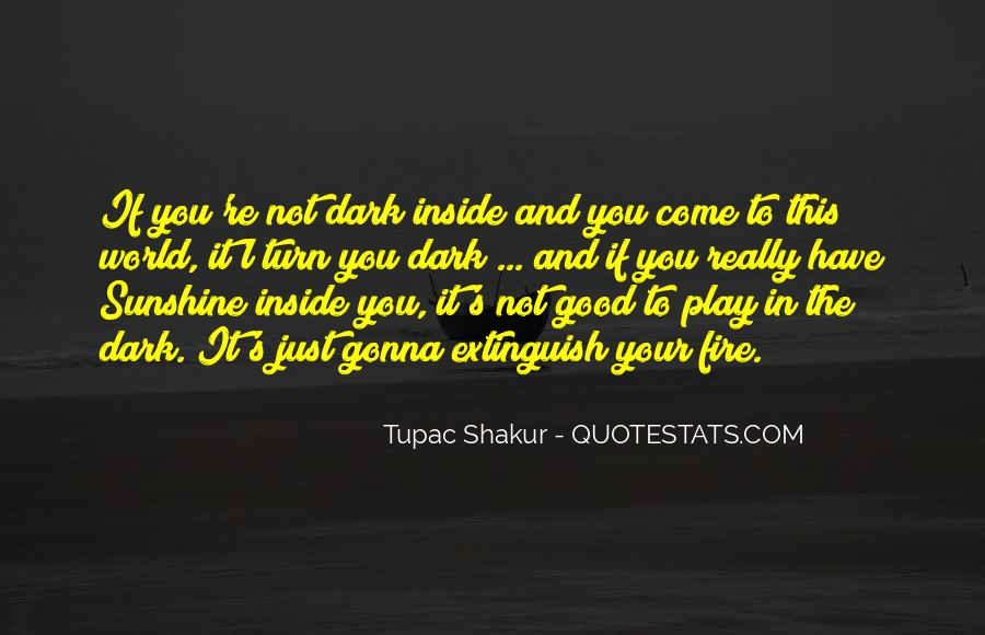 You Play With Fire Quotes #1123133
