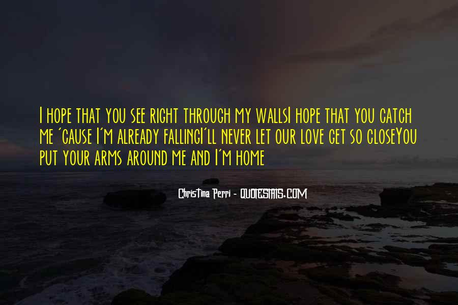 You See Right Through Me Quotes #745683