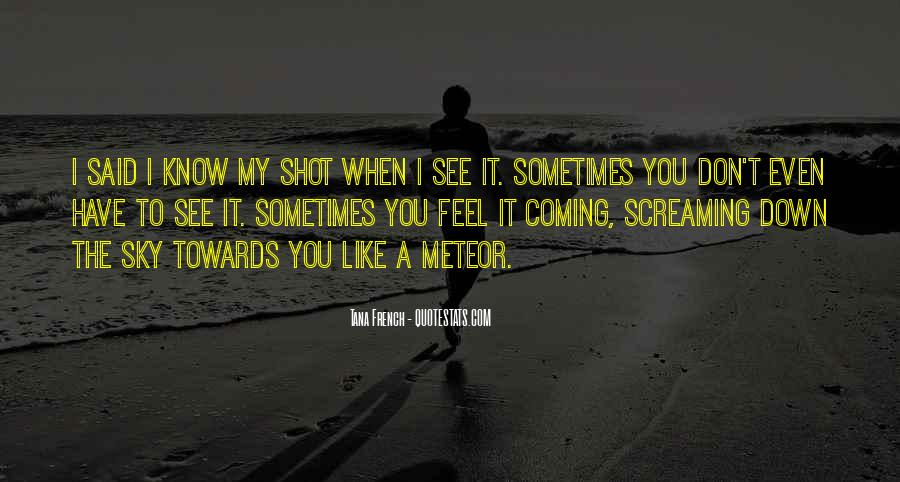 You Shot Me Down Quotes #183639