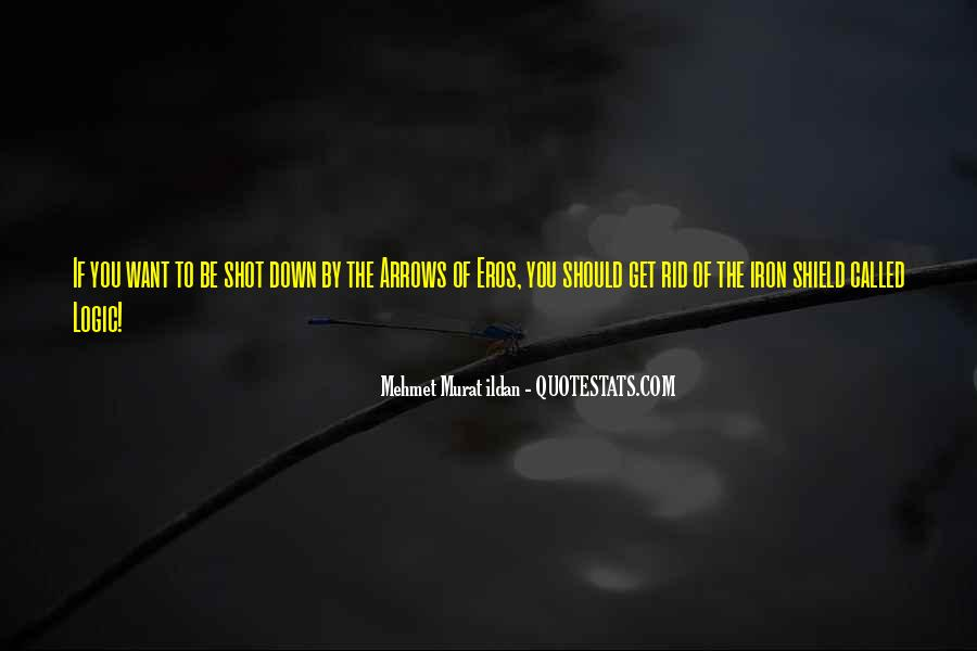 You Shot Me Down Quotes #20335