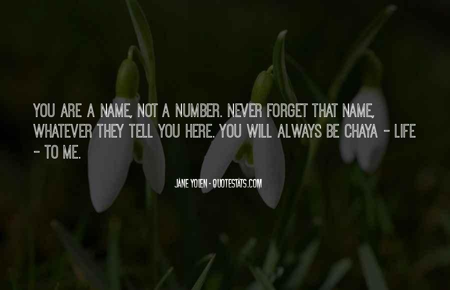 You'll Never Forget Me Quotes #394437