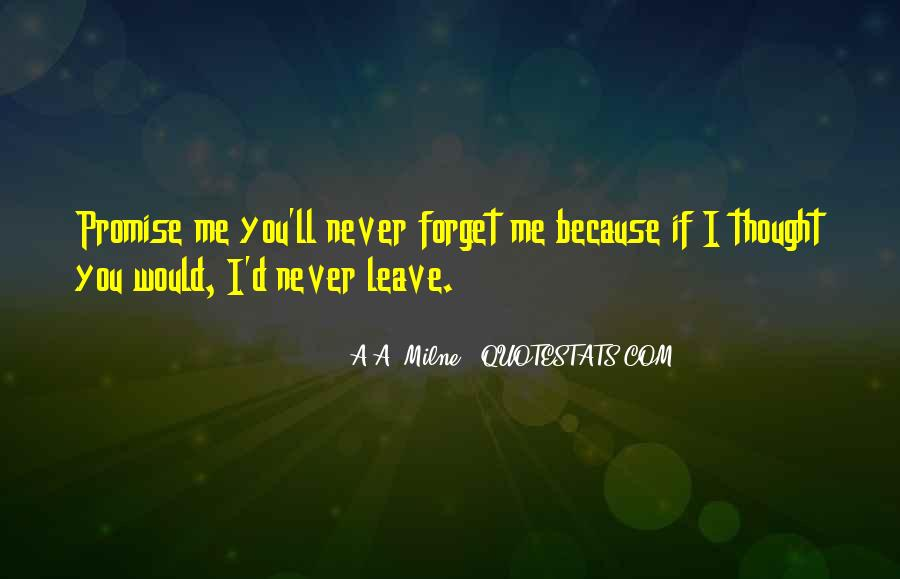 You'll Never Forget Me Quotes #520816
