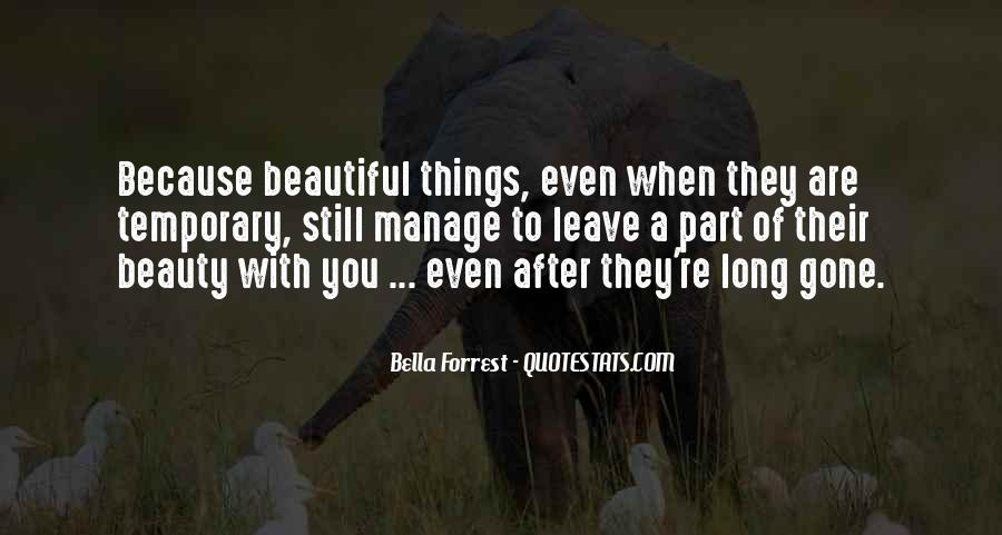 You're Beauty Quotes #542510