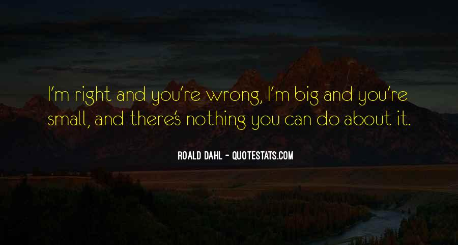 You're Right I'm Wrong Quotes #810044