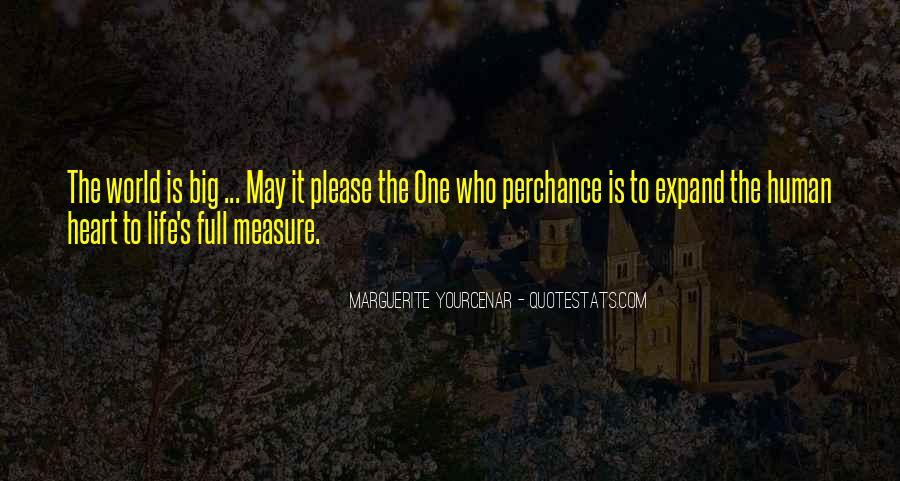 Yourcenar Marguerite Quotes #298658