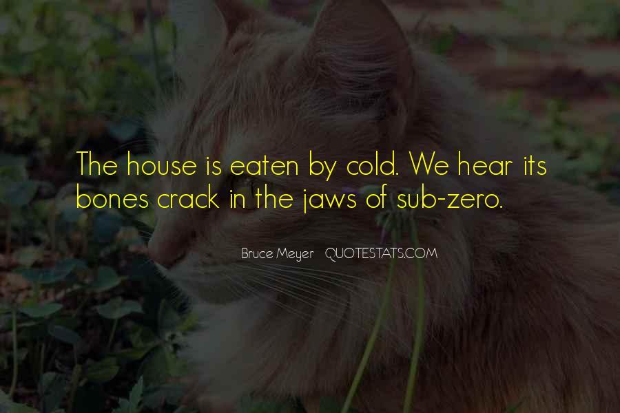 Zahir Shah Quotes #595545