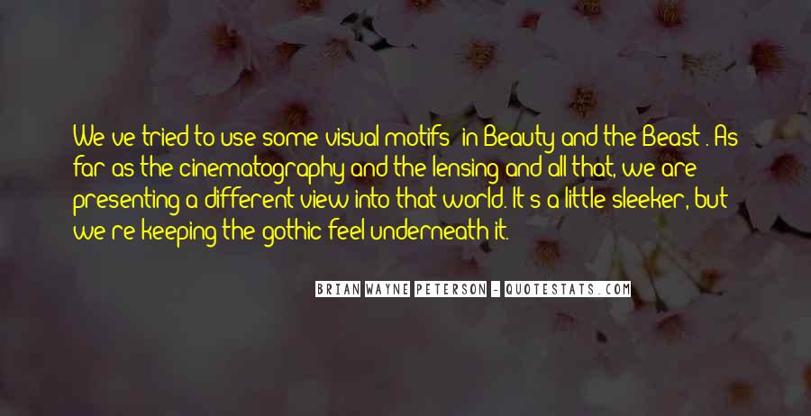Quotes About Visual Beauty #881012