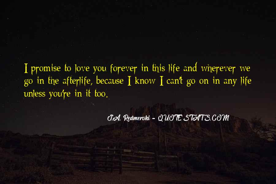 Quotes About I Promise You #143497