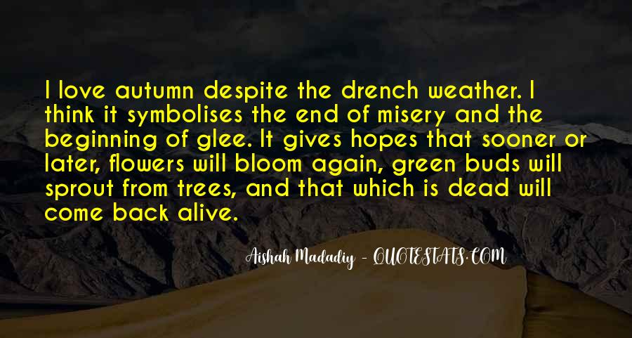 Quotes About Weather And Life #1616878