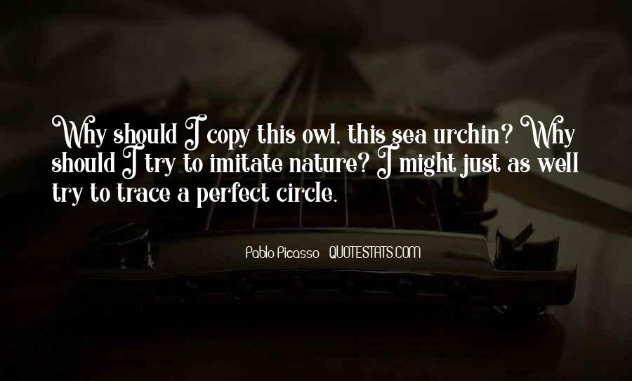 A Perfect Circle Quotes #893815