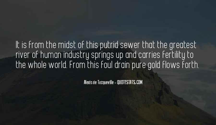 Alexis De Tocqueville Quotes #33829