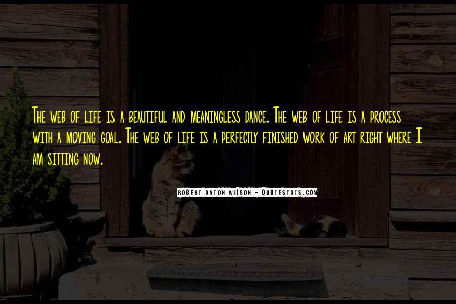 Ari Shavit Quotes #534397
