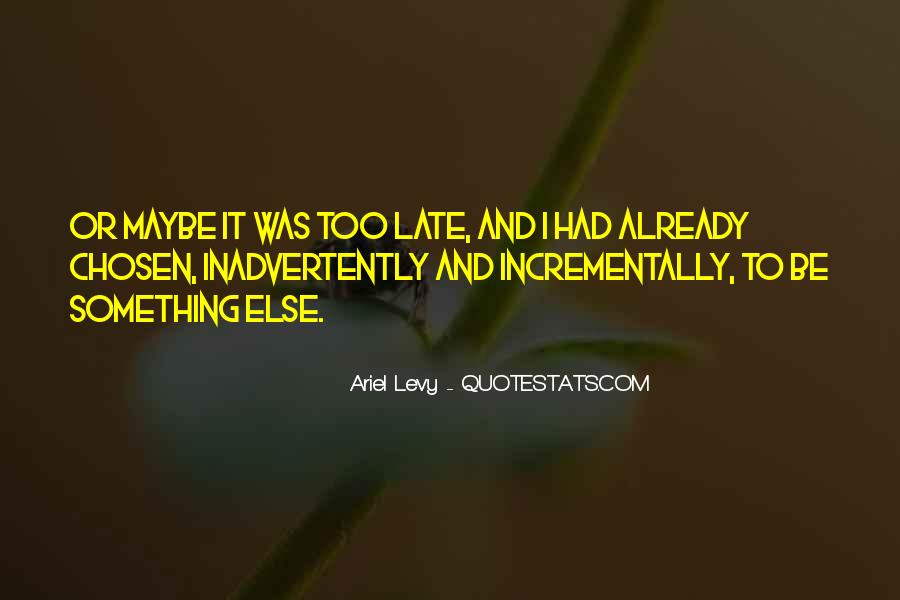 Ariel Levy Quotes #1791685