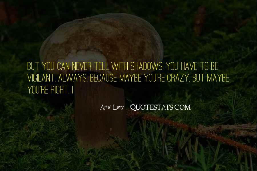 Ariel Levy Quotes #855549