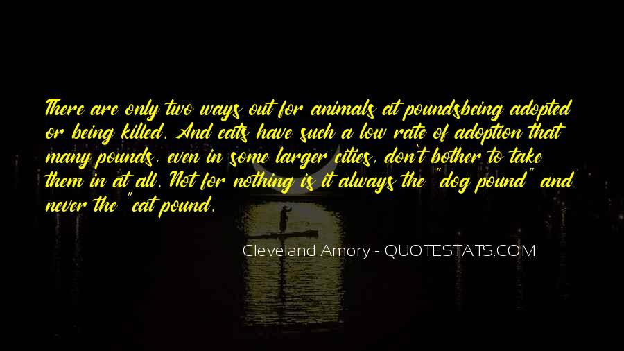 Aubrey Menen Quotes #1163413
